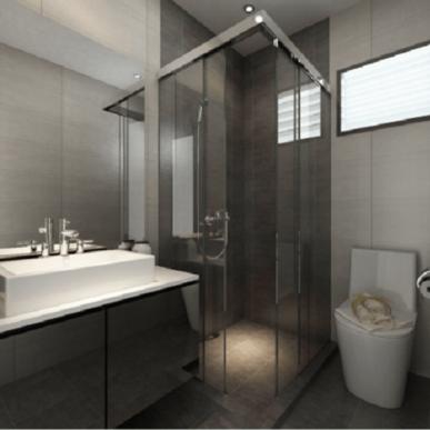 Toilet Shower Screen